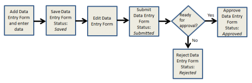 Data Entry Form Process