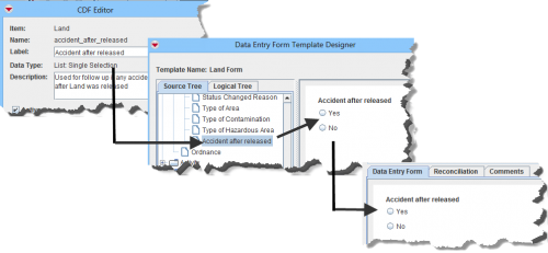 CDFs and Data Entry Form Items
